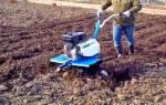 Процесс обработки почвы с помощью мотоблока – о главном в деталях